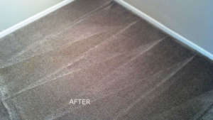 Carpet Cleaning In Myrtle Beach Sc Beach Walk Cleaning