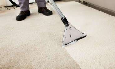Professional Carpet Cleaning Beach Walk Cleaning Services